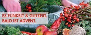 Advent in der Gärtnerei, Gärtnerei erleben